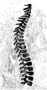 abstract-spine-design-21673766