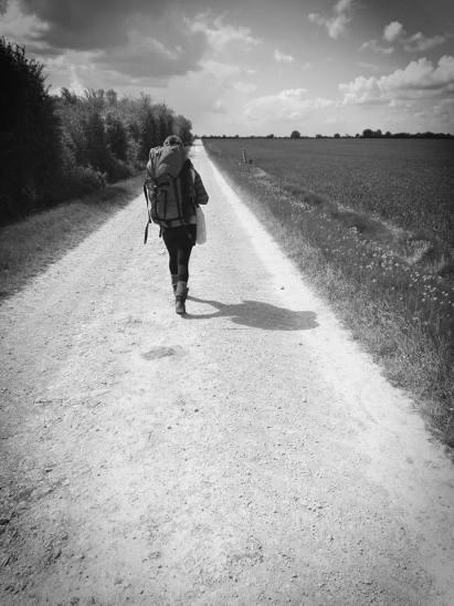 on the path camino may 17