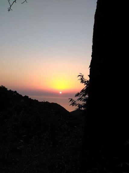 sunset forest kissos july 17